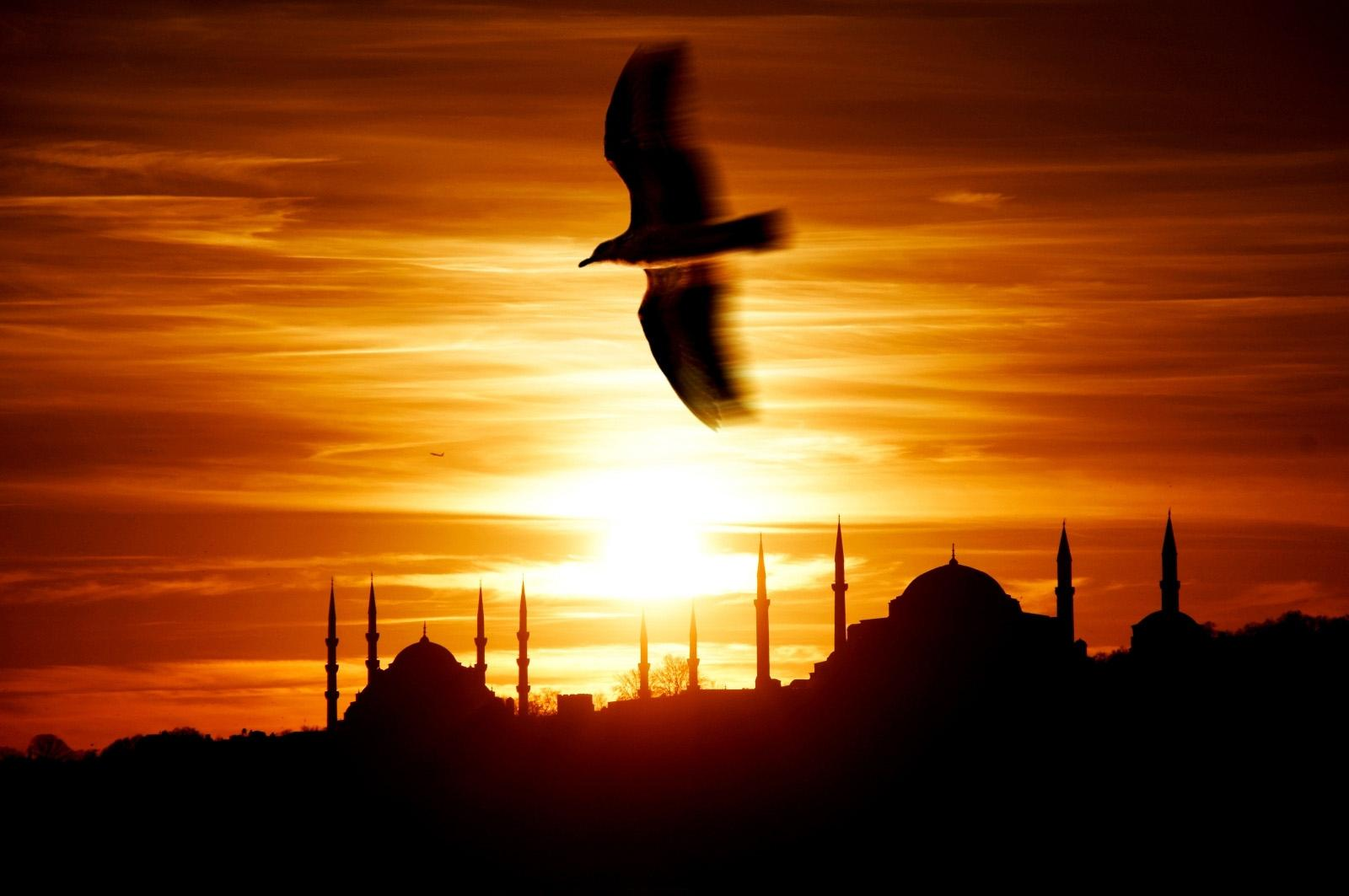 Üsküdar Sunset Sultan Ahmet and Hagia Sophia and the Seagull