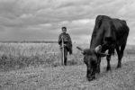Little Sudanese Herdsman