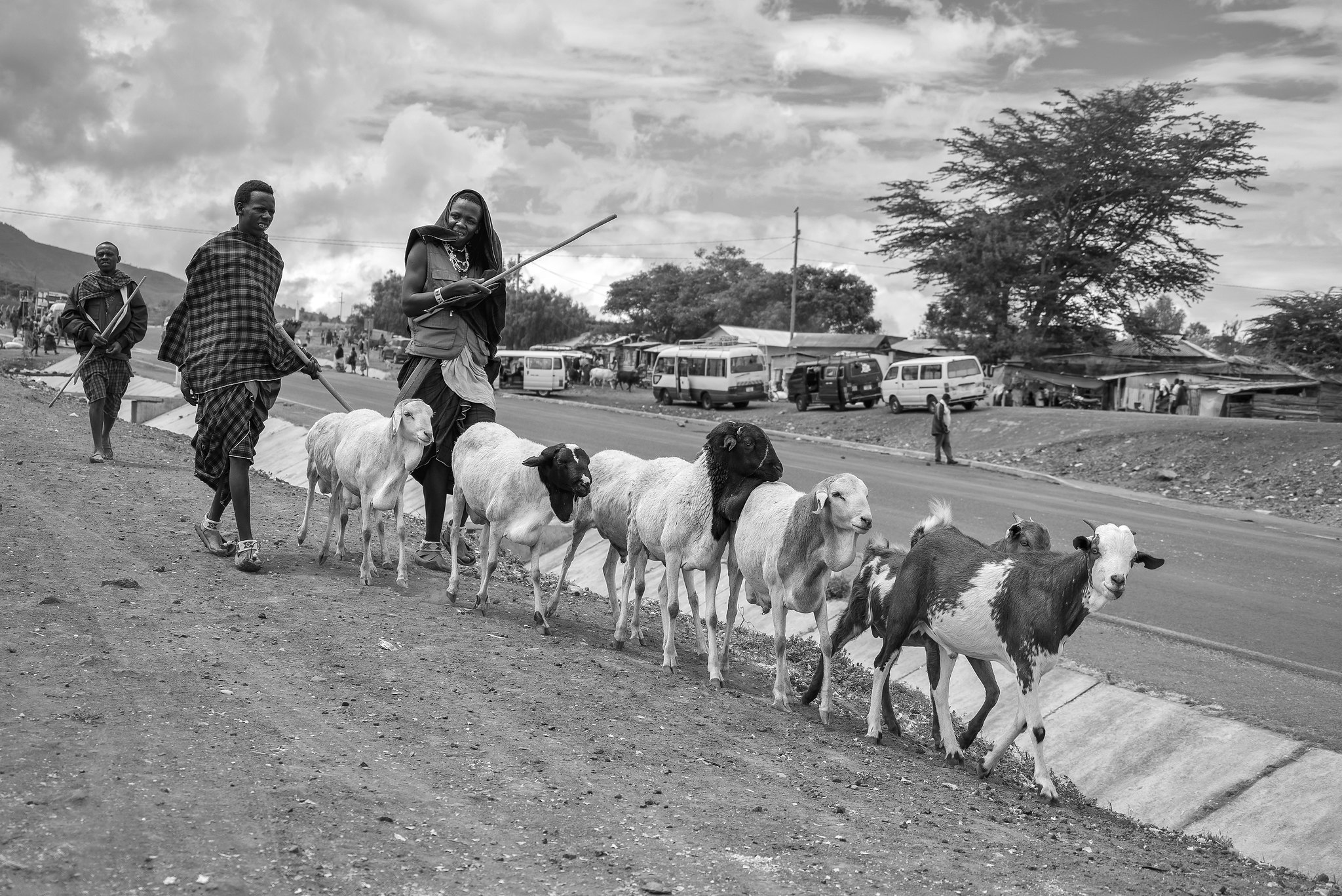 Maasai Herdsmen