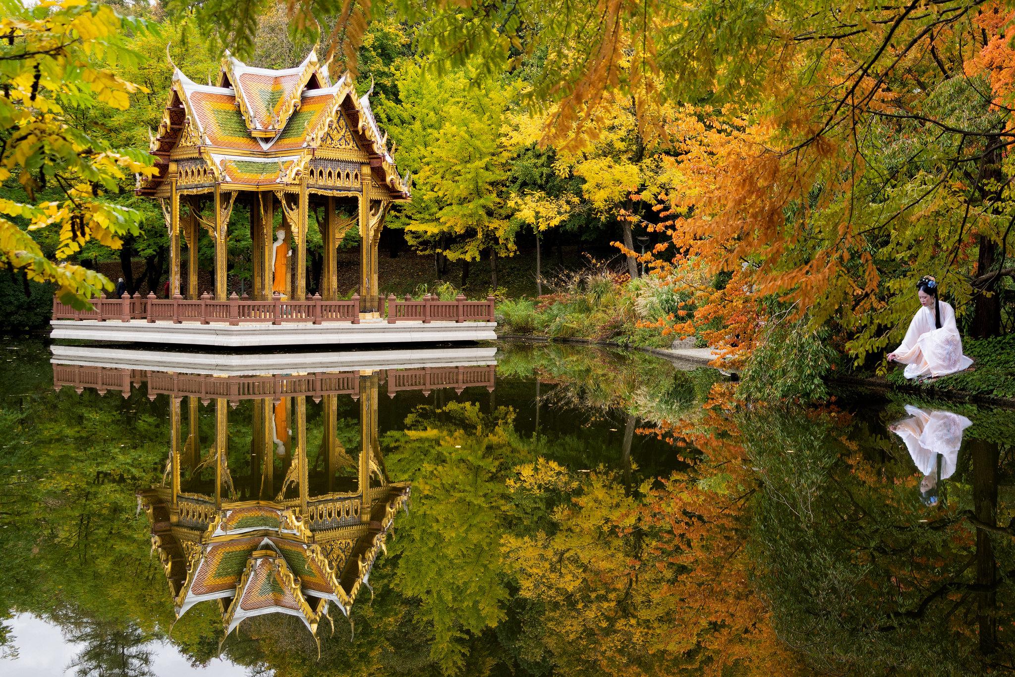Autumn in Westpark